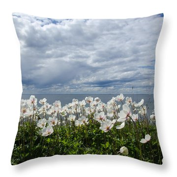 Coastal Backlit Anemones Throw Pillow