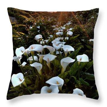 Coastal Calla Lilies Throw Pillow