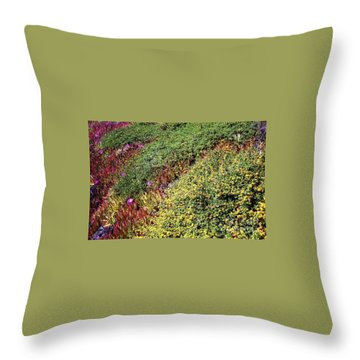 Coastal Flowers And Ice Plant Throw Pillow by Ted Pollard