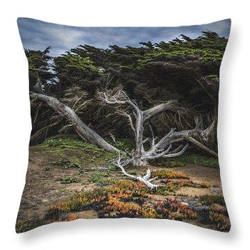 Coastal Guardian Throw Pillow