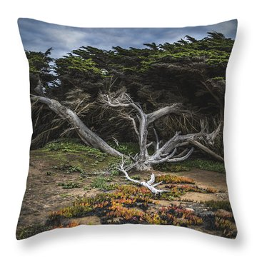 Coastal Guardian Throw Pillow