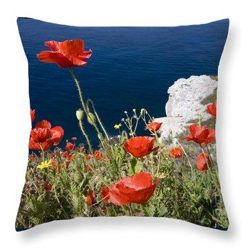 Coastal Poppies Throw Pillow by Richard Garvey-Williams