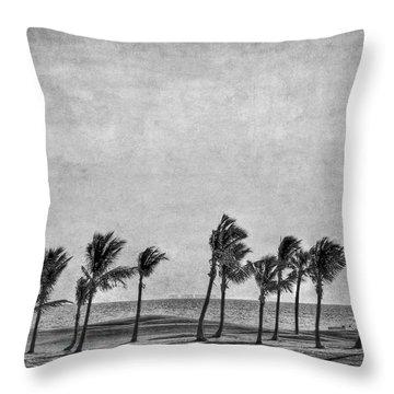 Coastal Winds Throw Pillow