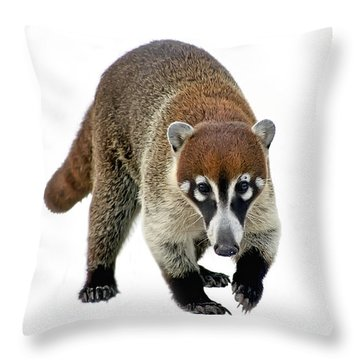 Coatimundi Throw Pillow