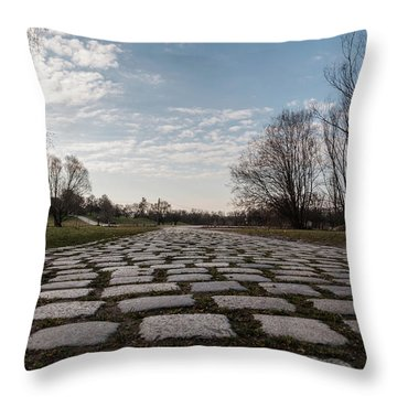 Cobble-stones Throw Pillow by Sergey Simanovsky