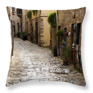 Cobblestone Street Throw Pillow by Rae Tucker