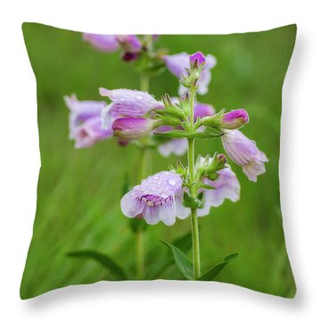 Cobea After Rain Throw Pillow