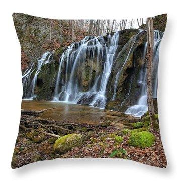 Cobweb Falls Throw Pillow