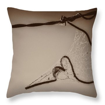 Throw Pillow featuring the photograph Cobwebs On My Heart by Mary Hone