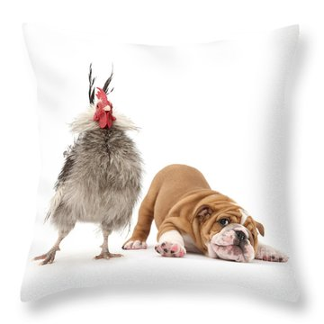Cock N Bull Throw Pillow