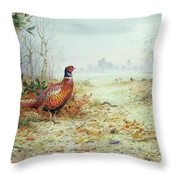 Cock Pheasant  Throw Pillow by Carl Donner
