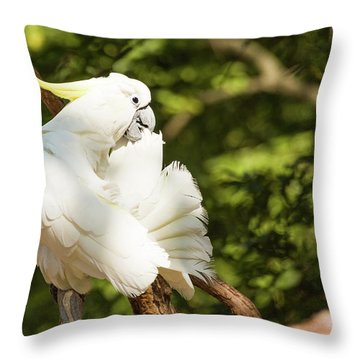 Cockatoo Preaning Throw Pillow