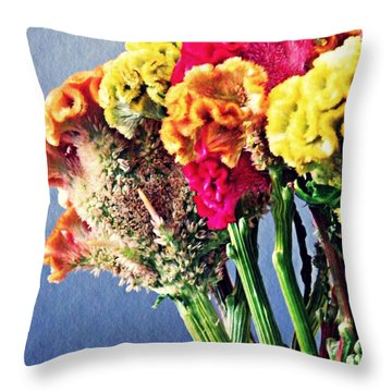 Throw Pillow featuring the photograph Cockscomb Bouquet 2 by Sarah Loft