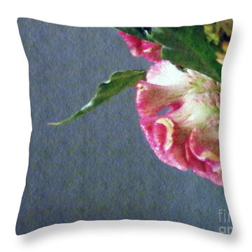 Throw Pillow featuring the photograph Cockscomb Bouquet 6 by Sarah Loft