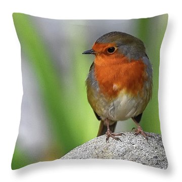 Cocky Robin Throw Pillow
