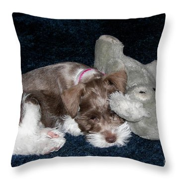 Throw Pillow featuring the photograph Coco And Baby by Carol  Bradley