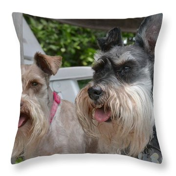 Throw Pillow featuring the photograph Coco And Rocky by Carol  Bradley