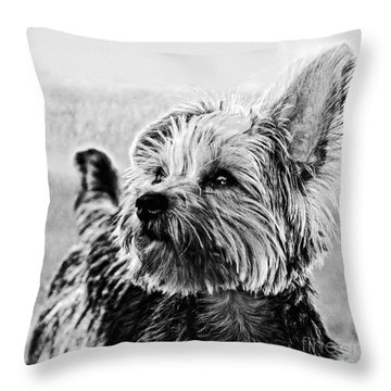 Coco B/w Throw Pillow