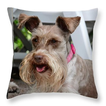 Throw Pillow featuring the photograph Coco by Carol  Bradley
