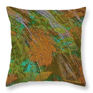 Cocoa's Pool Throw Pillow by Sherri Meyer