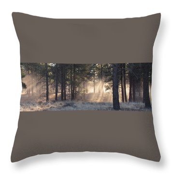 Coconino Dawn Throw Pillow
