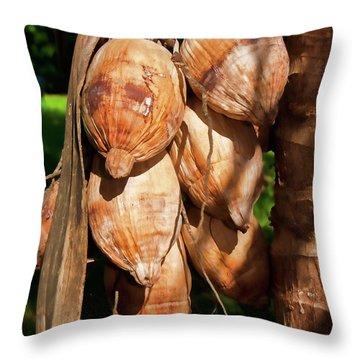 Coconut 3 Throw Pillow