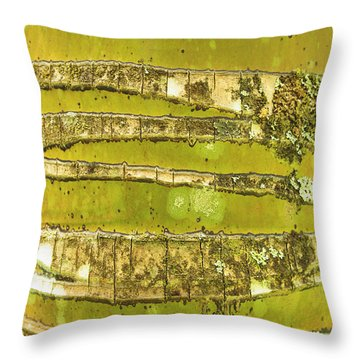Coconut Palm Bark 1 Throw Pillow by Brandon Tabiolo - Printscapes