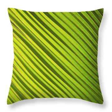 Coconut Palm Throw Pillow by Brandon Tabiolo - Printscapes