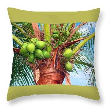 Coconut Palm Treasure Coast Florida C1 Throw Pillow