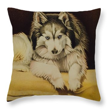 Cody Throw Pillow