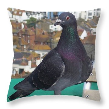 Throw Pillow featuring the photograph Coffee Shop Pigeon by Jolanta Anna Karolska