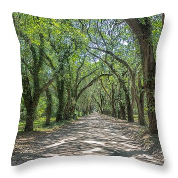 Coffin Point Roadway Throw Pillow by Patricia Schaefer