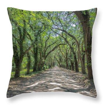 Coffin Point Roadway Throw Pillow