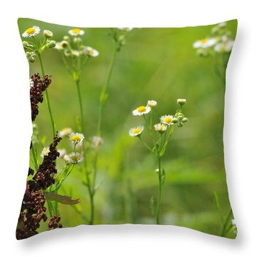Cohabitation Throw Pillow