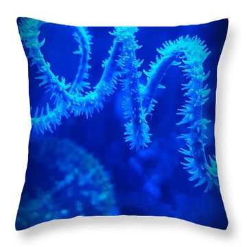 Coil Coral Throw Pillow