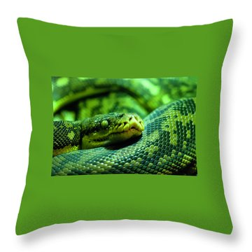 Coiled Calm Throw Pillow