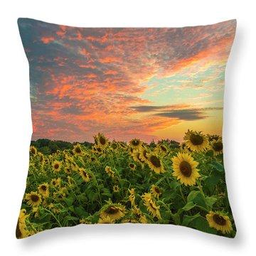 Colby Farm Sunflowers Throw Pillow