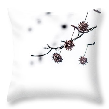 Cold And Pointy Throw Pillow by Wade Brooks