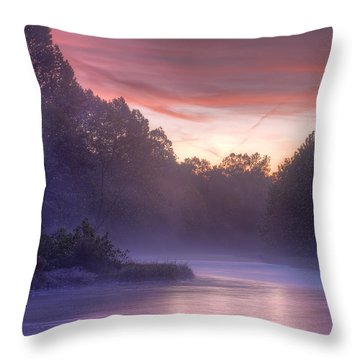 Cold Blue Mist Throw Pillow by Robert Charity