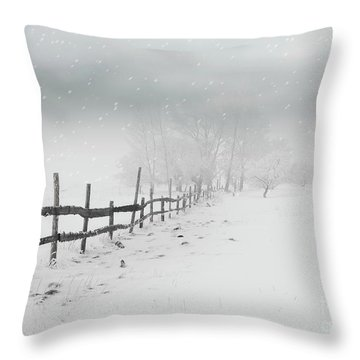 Cold Crow Throw Pillow