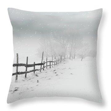 Cold Crow Throw Pillow