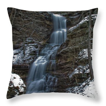 Cold Day At The Cathedral Throw Pillow