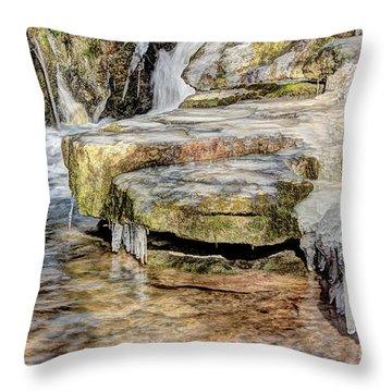 Throw Pillow featuring the photograph Cold Feet by Wanda Krack