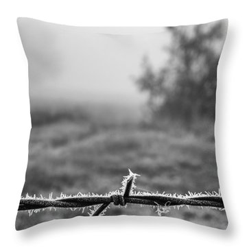 Cold Frosty Morning Throw Pillow by Monte Stevens