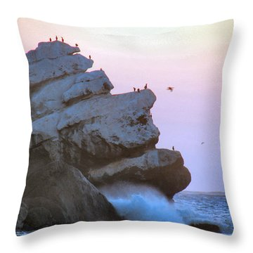 Cold Grey Dawn Throw Pillow
