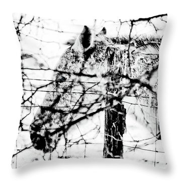 Cold Horse Throw Pillow