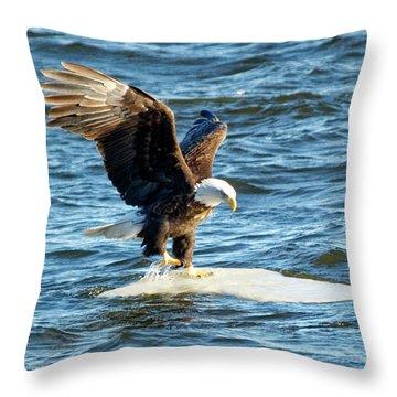Cold Landing Throw Pillow