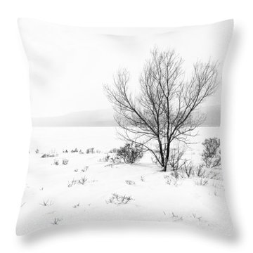 Cold Loneliness Throw Pillow