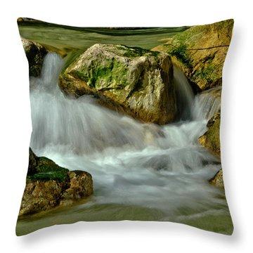 Cold Milky Creek Throw Pillow