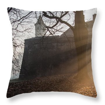Throw Pillow featuring the photograph Cold Morning by Davorin Mance